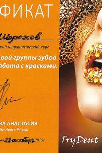 Шорохов Г.С (15)
